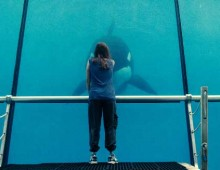 Rust and Bone TV :30